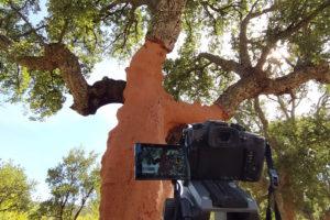 Filmando Extremadura