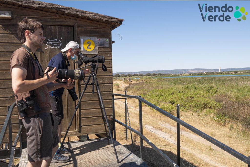 Birdwatching Arrocampo